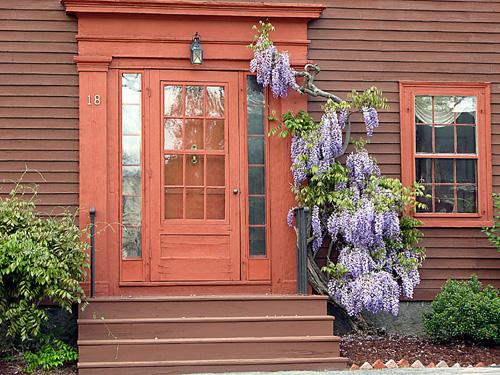 Old Doors U0026 Old Flowers